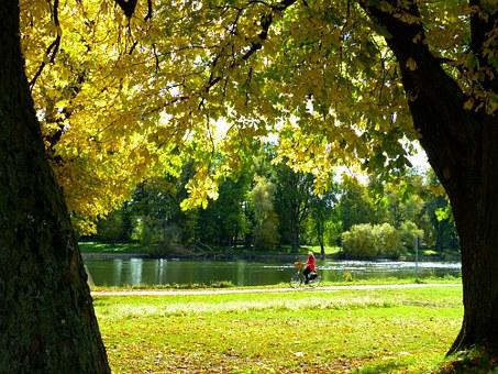 cyklo park