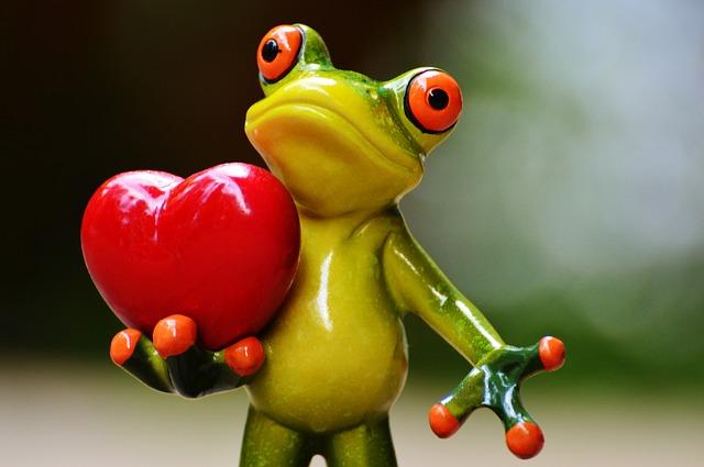 žabák a srdce